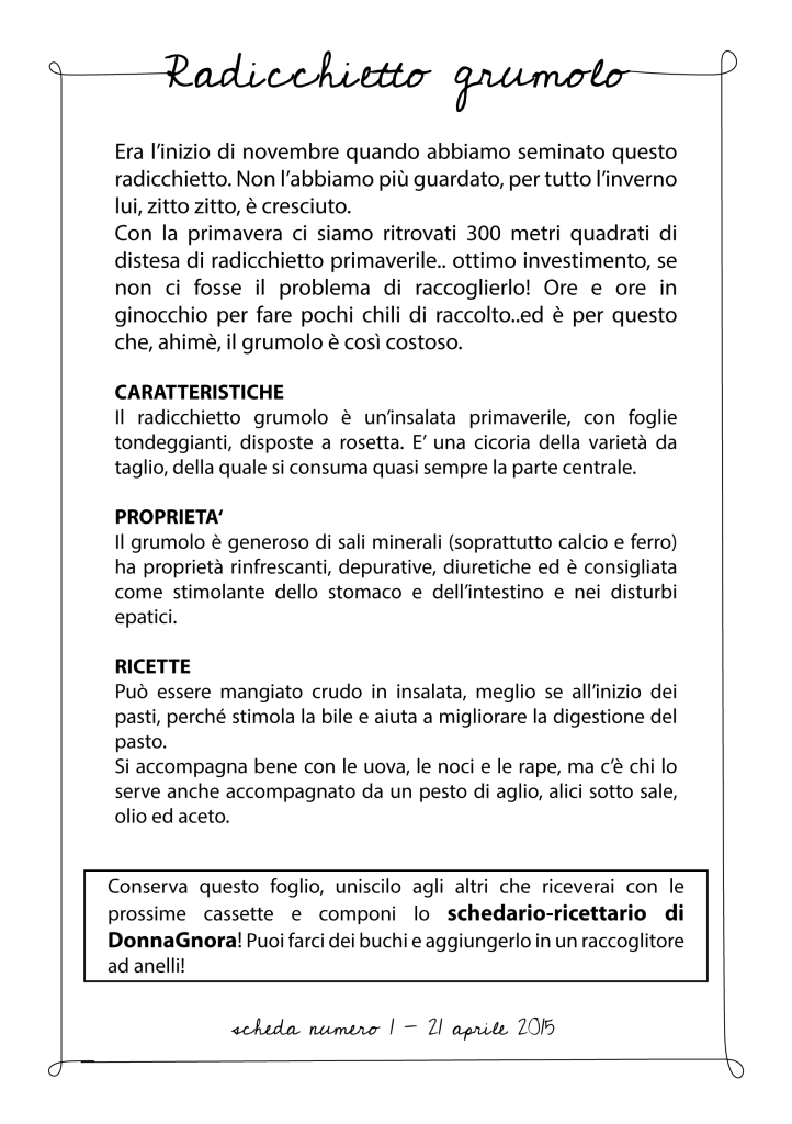 RADICCHIO GRUMOLO-01