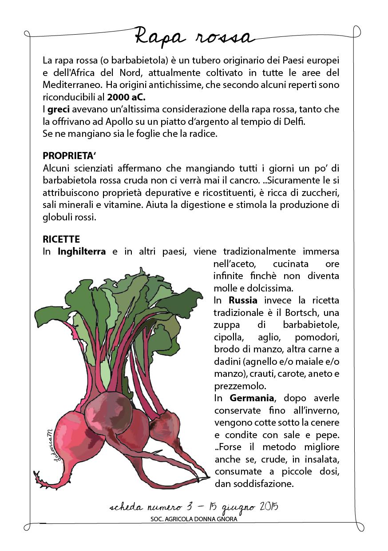 barbabietola scheda-01