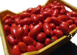 vendita casse di pomodori, melanzane e altro!