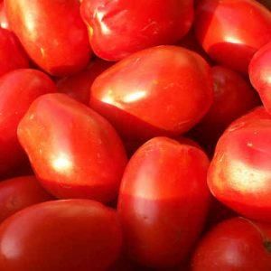 Pomodori-San-Marzano