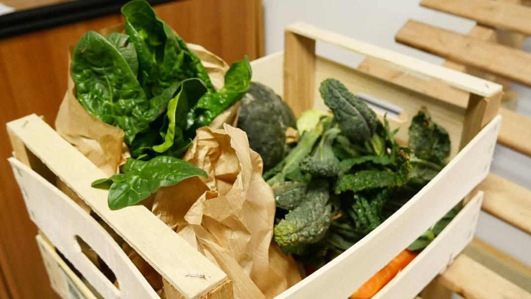 10 motivi per scegliere l'orto in cassetta