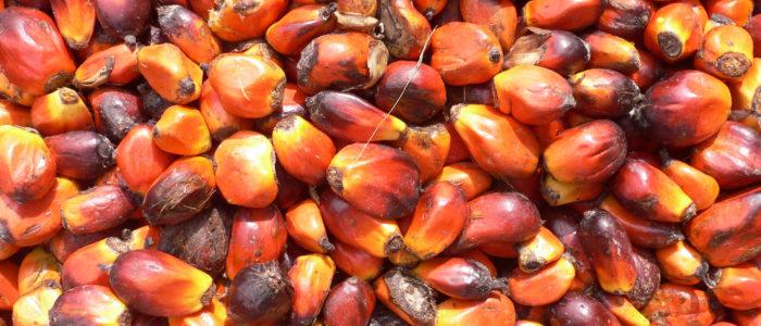 senza olio di palma?!