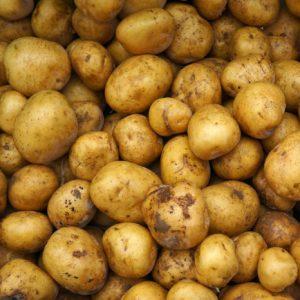 patatine novelle